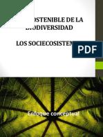 Curso Bd y Sist Tropicales p2