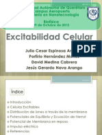 Excitabilidad celular - Biofísica