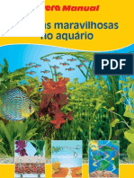 Planta Maravilhosa No Aquario