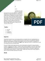 Turbina Pelton 05052013