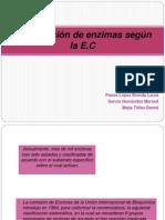 Clasificación de enzimas según la E