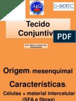 Revisão - Histologia