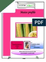 MAIZE Profile