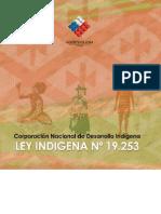 Ley Indígena 19253