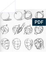 Anatomia Moldear La Cabeza