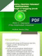 Figur (Profil) Profesi Perawat Profesional4