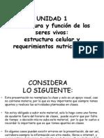 celula2013.pdf