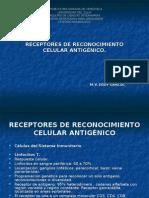 Receptores de Reconocimiento Celular Antigenico. Inmunologia