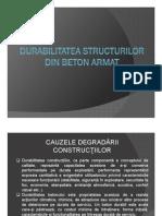Durabilitate-Note Curs Petru Mihai