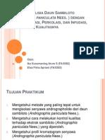 Ekstraksi Simplisia Daun Sambiloto (Andrographis Paniculata Nees
