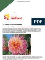 As plantas e flores de outono _ Jardiland Portugal.pdf