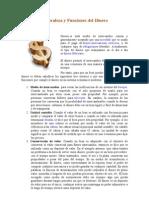 Naturaleza Del Dinero- 000