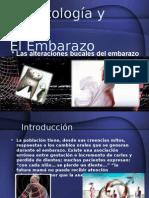 Odontología Embarazo