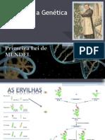 Genetica 2 Lei de Mendel