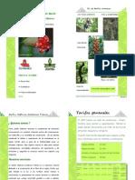 Catalogo_educativo_Jardín_Botanico_2012