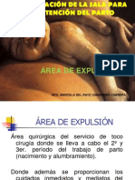 area de expulsion.ppt