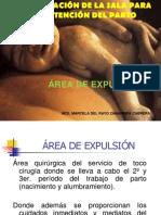 area de expulsion.ppt