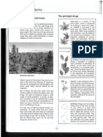 Drug problems.pdf