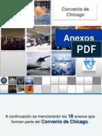 anexosoaci-120410173319-phpapp02