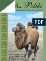 GP40PDF.pdf