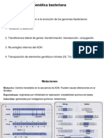 46. Plasmidos- Thg 2