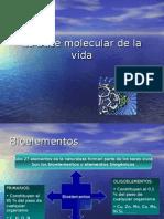 La Base Molecular de La Vida 1[1]