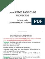 Conceptos Basicos de Proyectos Pmbok