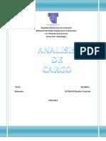 analisi de cargos.docx