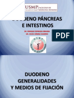 Duodeno Pancreas e Intestino
