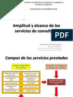 104621306 Amplitud y Alcance de Los Servicios de Consultoria
