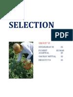 Selection Final