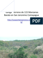 Ganga de Terreno En San Jeronimo Comayagua.pptx