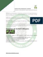 Función del Biofertilizante