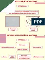 Métodos de Coloração de Bactérias
