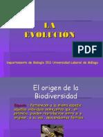 14 Evolucion-malaga 2do2010