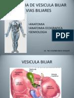 Ecografia de Vesicula Biliar y Vias Biliares