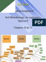 1ESC 590.Soil Biota.archaea Viruses