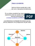 Moleculares  2013