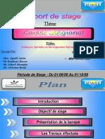 Rapport de Stage-1