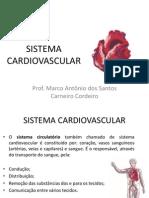 Sistema Cardiovascular AULA 1 2012