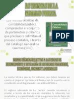 Normas Tecnicas de La Contabilidad Publica (2)