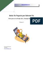 Negocios en Auge Por Internet