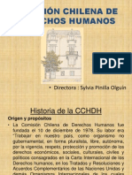 Comision Chilena DDHH Clinica Sta Lucia