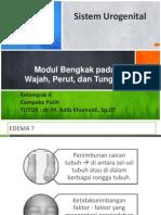 Ppt Pbl Modul 1 Urogenital