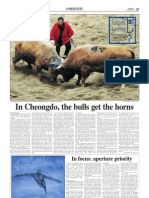 Korea Herald 20090403