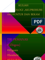 38217905-12-TITIK-ISTIMEWA-REFLEKSILOGI