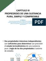 CAPITULO_III_Sustancia_Pura.pdf