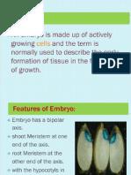 Somatic Embryogenesis , Callus Culture