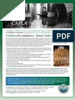 Appel à contribution  CAPLA Fall Focus Workshop - FR