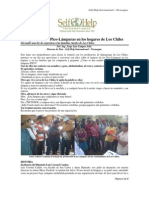 Informe Lamparas PICO-PHOCOS Historia 2